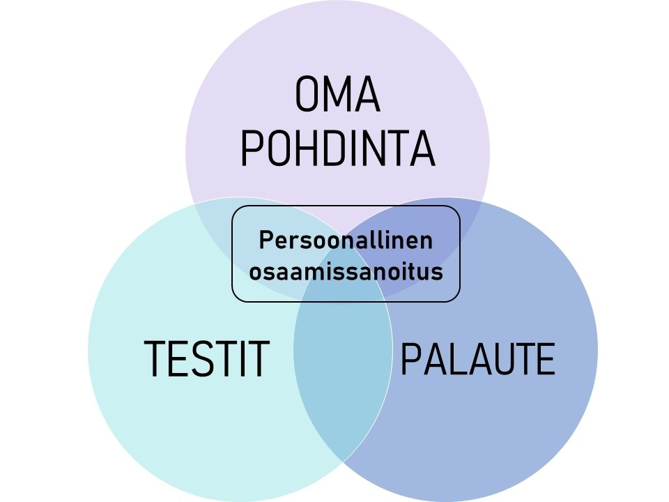Osaamissanoittamisen perusteina oma pohdinta, erilaiset testit, ja muiden antama palaute